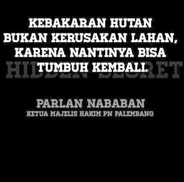 Kak pap quote dong