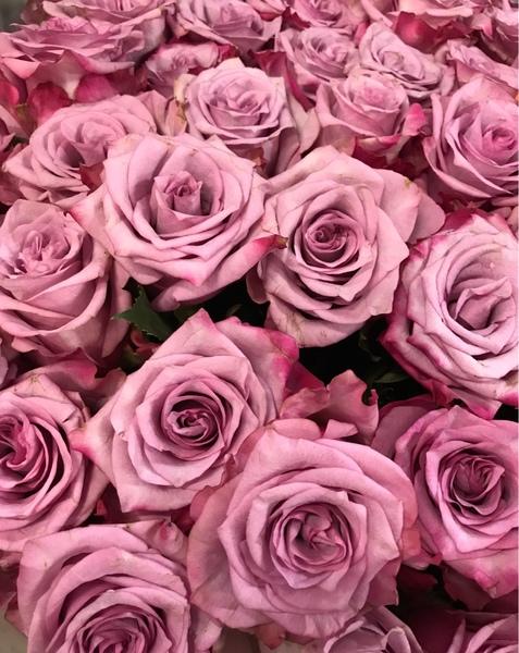 Пришли фото цветов