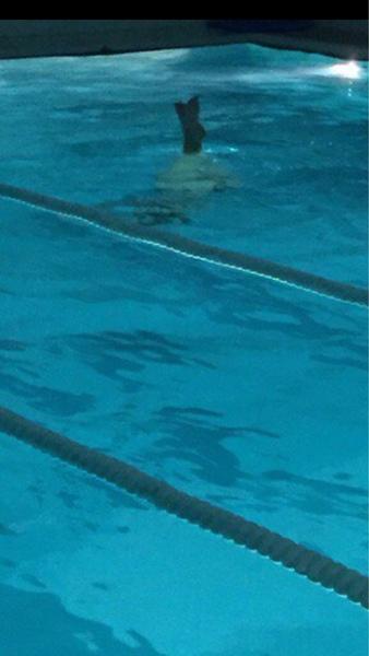 Тебе хотелось бы прыгнуть с трамплина в воду Или может быть синхронное плаванье
