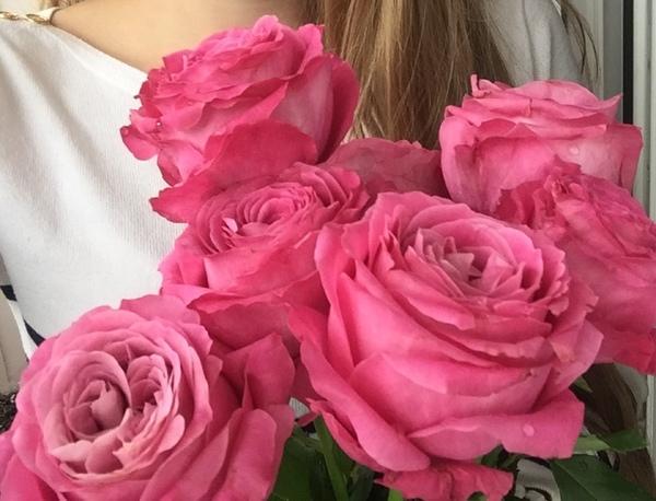 Какие цветы твои любимые