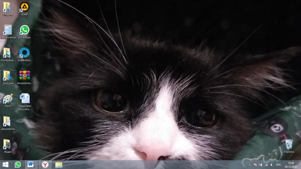 Как выглядит рабочий стол твоего компьютера Выложи фото