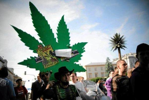 czy jesteś za legalizacją marihuany