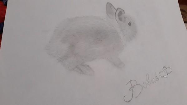 Lubisz rysować Może wrzucisz jakieś zdjęcie swojego rysunku  PsChciałabyś aby
