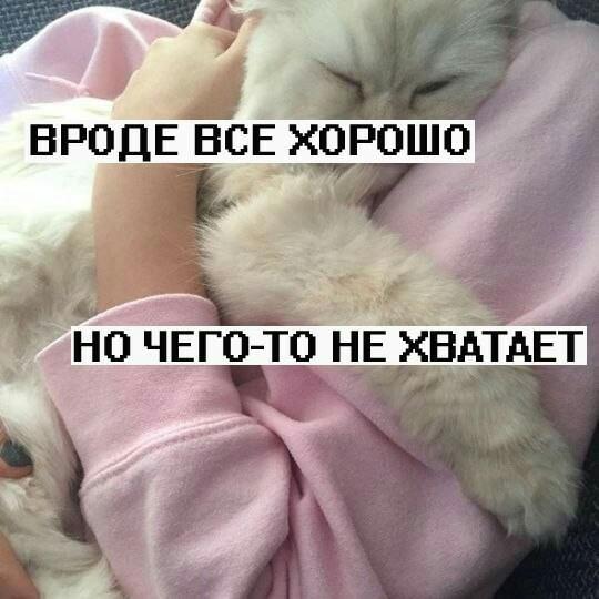 Postează o poză3