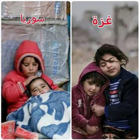 كم سوريآ ينبغي أن يتجمدوا من البرد  و كم فلسطينيآ ينبغي أن يلحقوا بهم من سكان