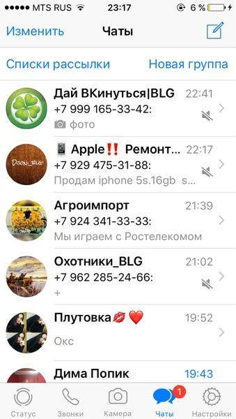 Скрин Вотсаппа