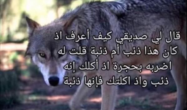 محمد الفخم