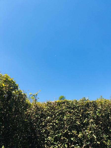 Pap foto langit yang paling kamu suka