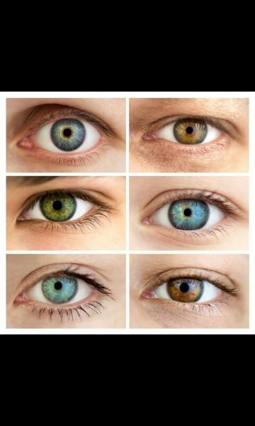 blaue oder braune Augen bei Mädchen