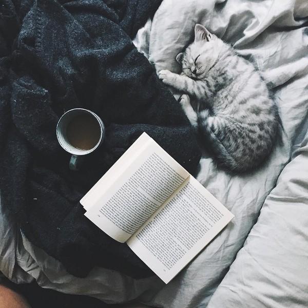 Твоя самая любимая книжка