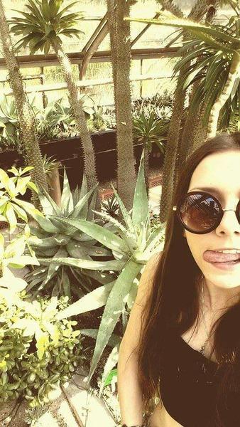 Jaka była historia z kaktusami
