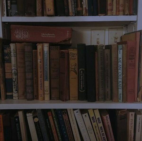 КНИЖНЫЕ ПЕЧЕНЬКИ день 18 22 Книга которую вы точно не будете перечитывать но и