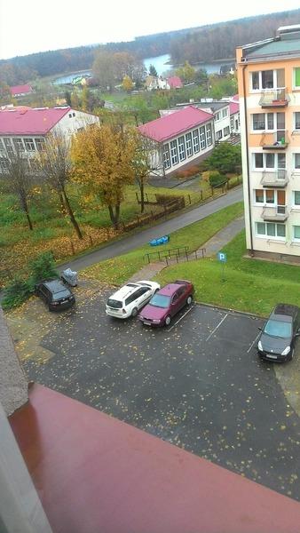 Dzień dobry Kochani  Słoneczko za oknem jest  Zdjęcie dzisiejszej pogody