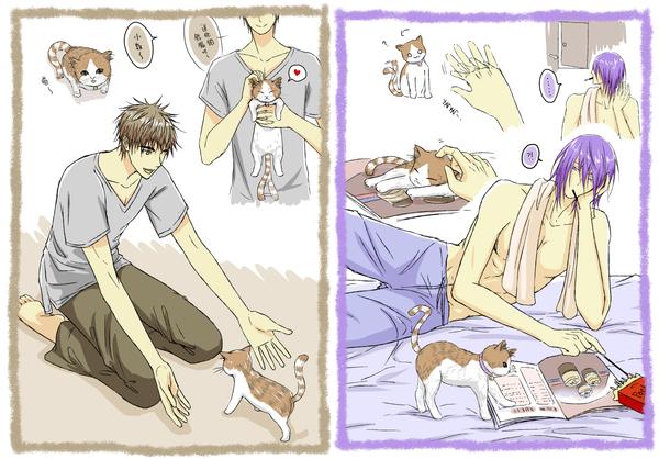愛阿坐唷求紫木看到貓的反應咦