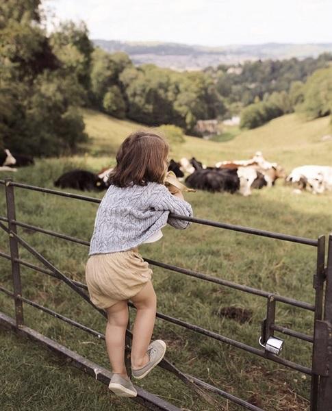 Безумно хочется сейчас уехать в деревню на неделю Побегать по полям