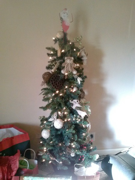 Do you have a Christmas tree Post a picture