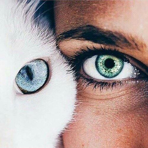 إهدوني صورة بلون أزرق  أصفر  او أخضر