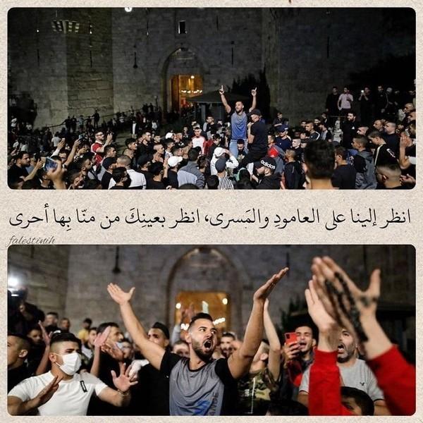 إن في القدس رجالا أبصروا درب الفلاحإن في القدس يتامى أنبتوا ريش الجناحإن في