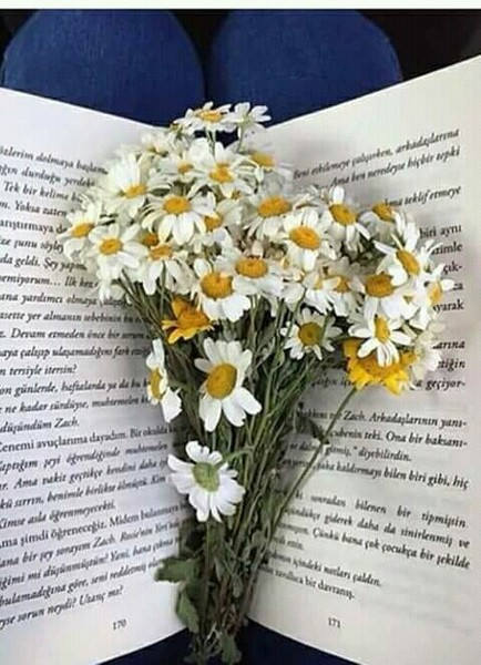 Kitapların en güzel yanı bir kere yazılıyor olmasıİçindeki duygunun değişme