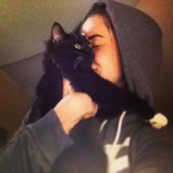 Давай фотку с котом