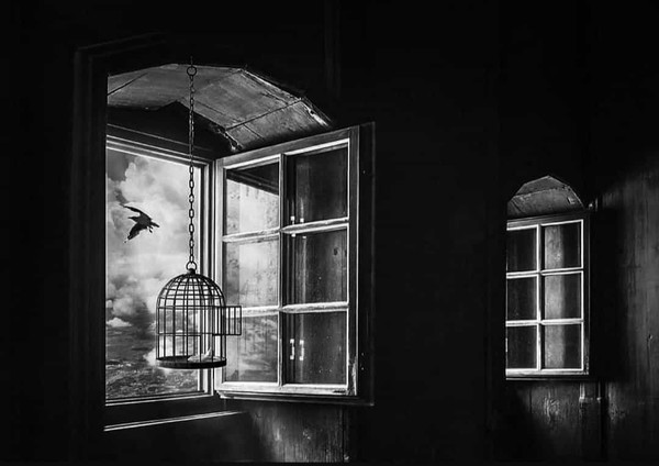 Kafes içinde kafestesin ey can   Dünya kafes   Beden kafes   Gönül dahi