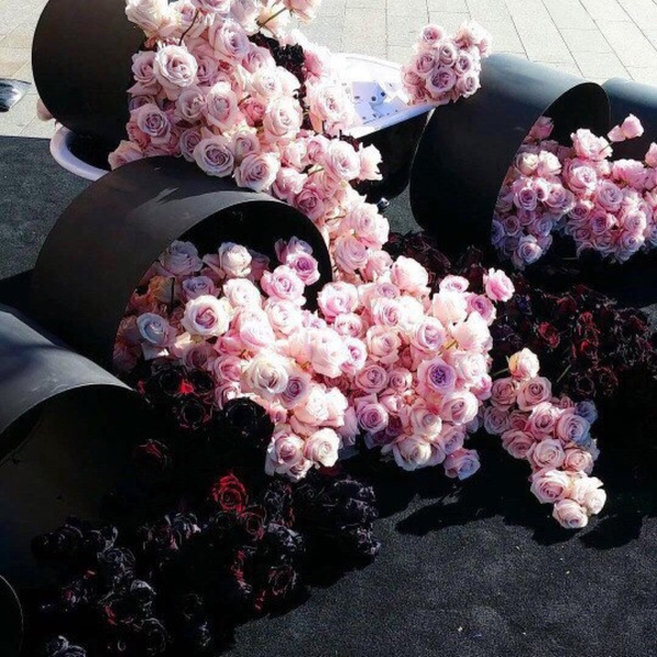 Какие цветы подарить девушке