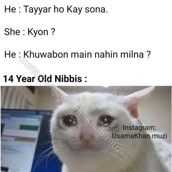 Post any 14 year old NibbaNibbi Meme