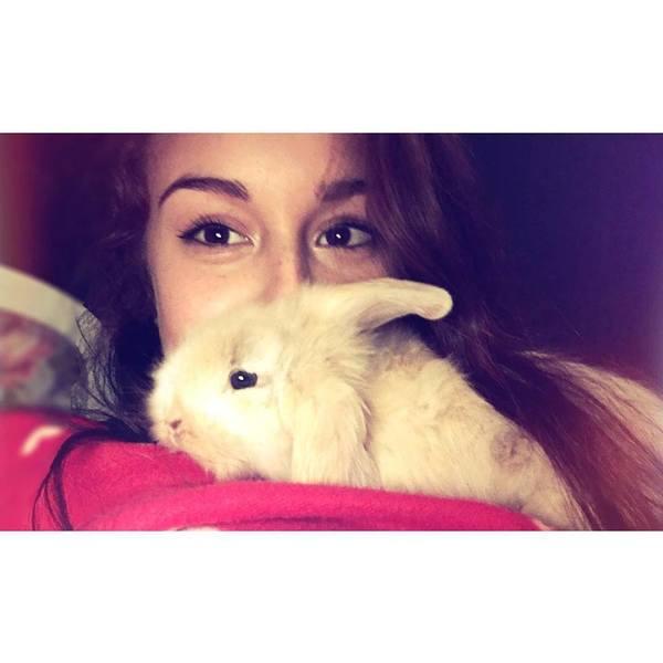 Hayırlı Gecelerr Herkesee  bunny