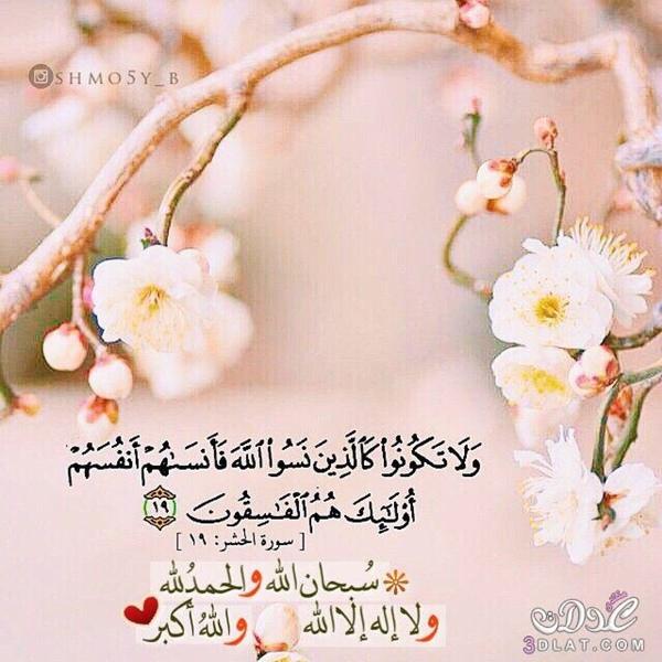 20 رمضان    أياما معدودات   اللهم لا تجعلها تفارقنا ونحن فيها من الخاسرين اللهم