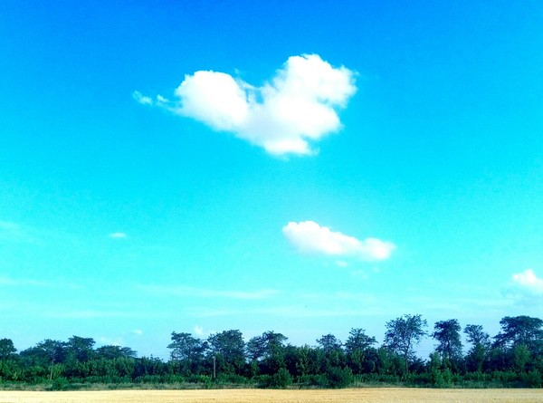 С добрым утром Сердце встрепенулось И навстречу новый день спешит Как там моё