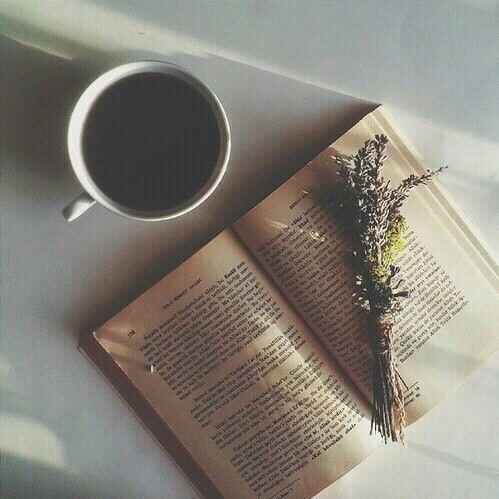 Witam   Czytasz jakieś książki   Co lubisz czytać najbardziej jaki gatunek