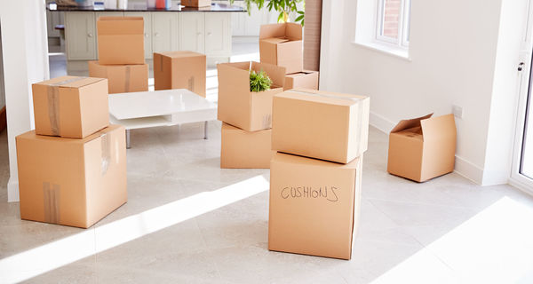 Top Movers MTL  Moving Companies Montreal