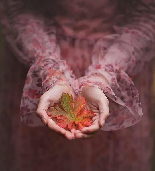 من يسامحون كثيراقد يأتي عليهم يوم لا يطيقون فيه ان يسمعوااي عذر ولو كان