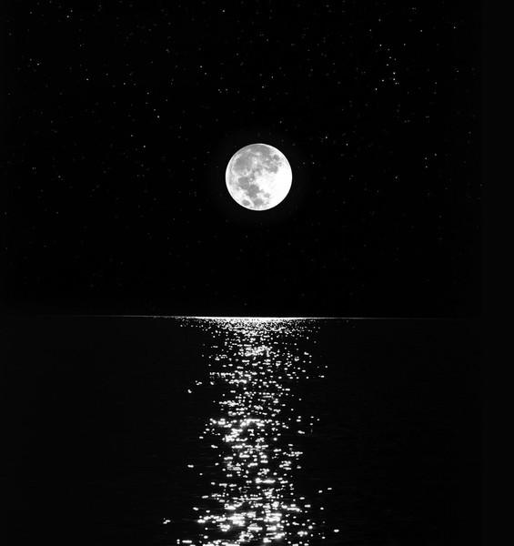 علاء  جاور القمر ب حرفك