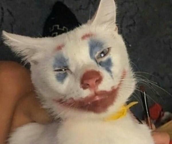 Девушкам нужен макияж