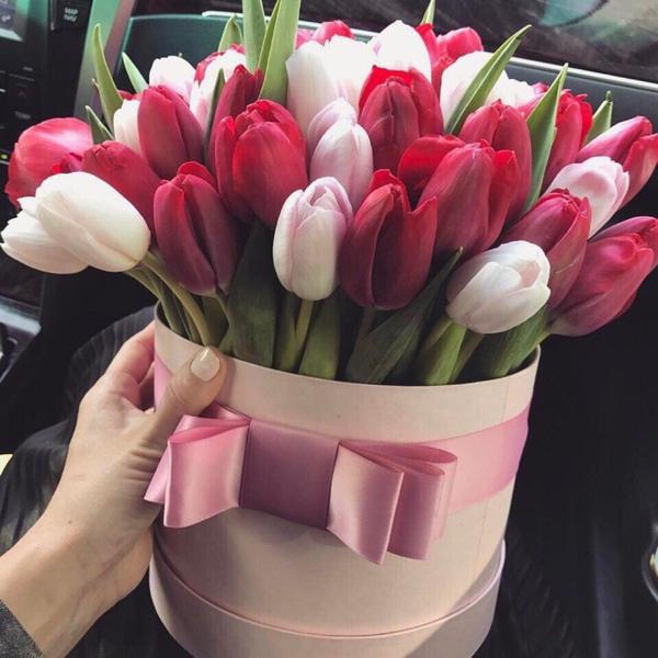 Цветы без повода  Или только по праздникам