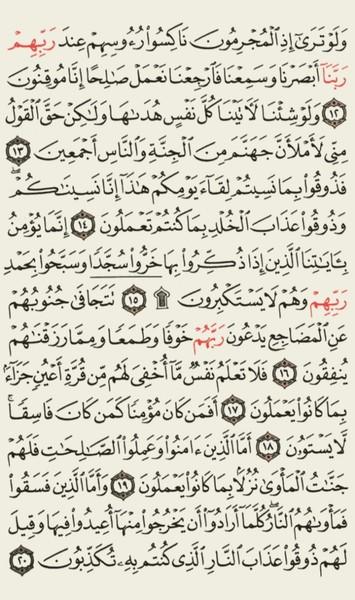 الورد اليومي  سورة السجدة صفحة    اللهم ارحم واغفر لطارق الجرايشة