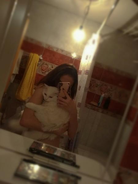 любишь котиков з