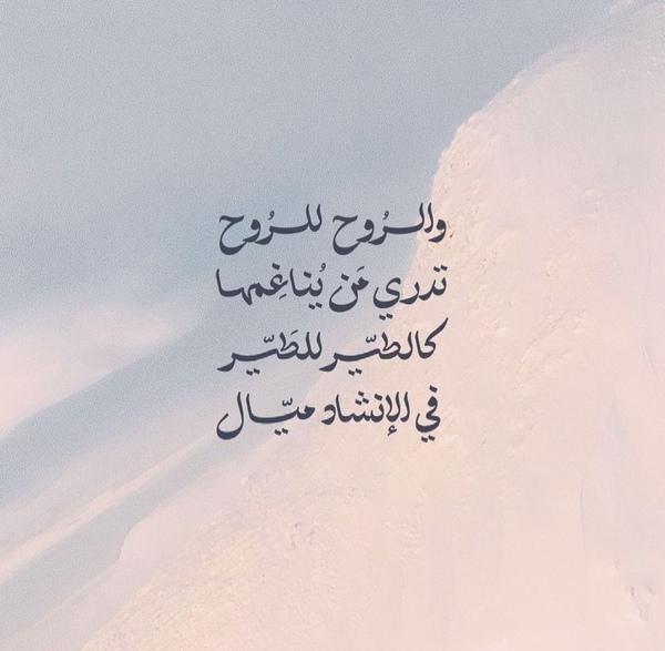 اتطمن  أنا اللي مهما توجعت منك  رح تلاقيني بشيلك بقلبي قبل عيوني  يسعد اوقاتكن