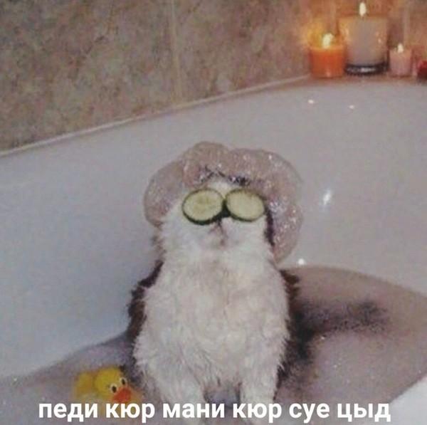 Кинь фотку с ванны