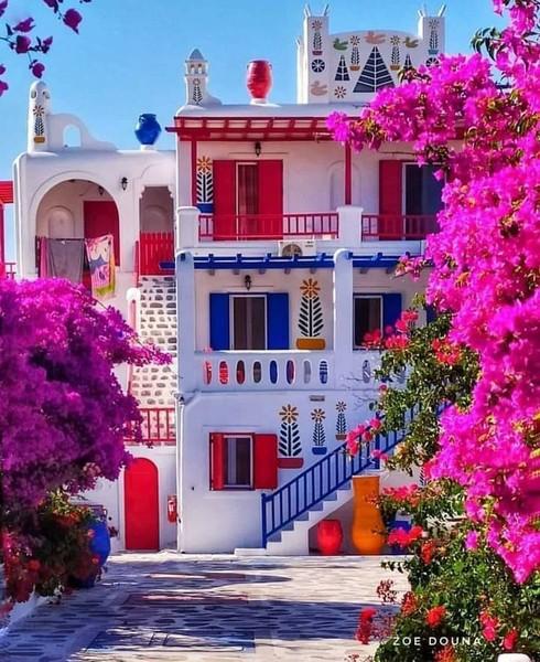 الصورة عبارة عن الوان زاهية متناسقة تعطي للمكان جمال ودفء   اليونان