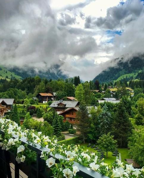 الرائحة  الهدوء  البساطة  الطبيعة الخلابة  سويسرا