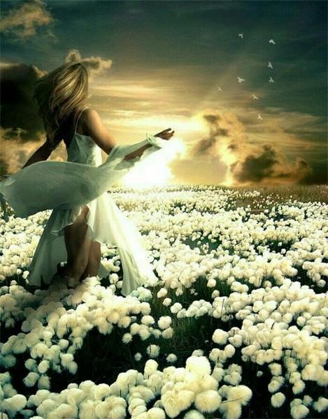 Расцветает черемуха Цветение какого растения тебе по душе