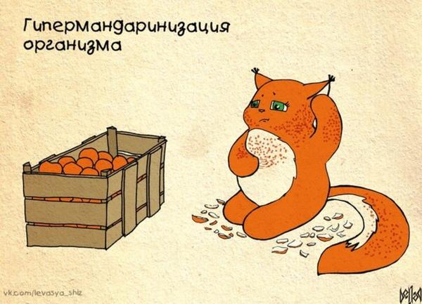 Сколько мандаринов в день ты можешь съесть