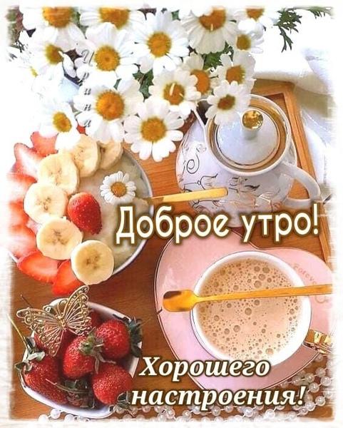 Утро доброе