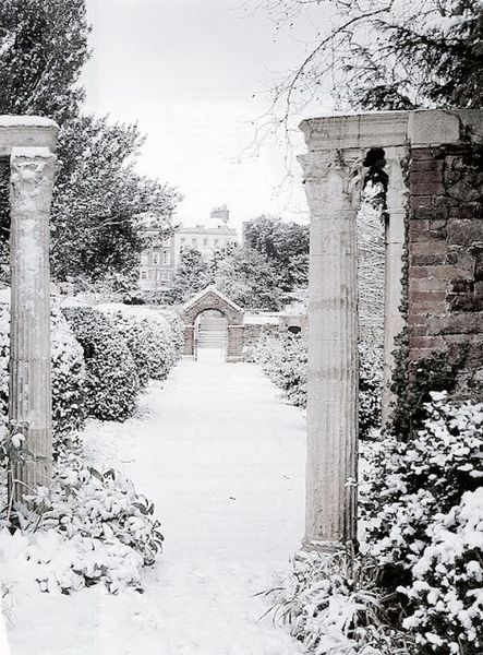 добрый день картинка дня тема зимний сад