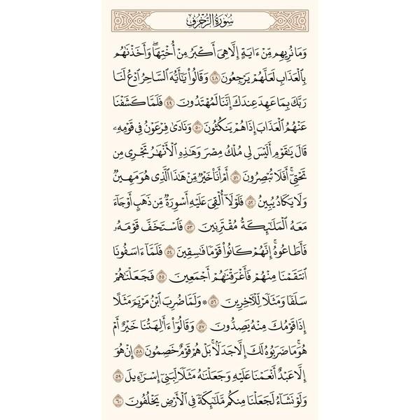 ورد الثلاثاء  صفحة