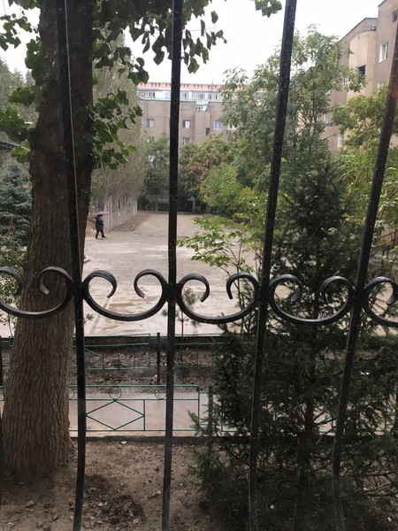 ФД Ну вот и октябрь Много ли в Вашем городе опало листьев Прошу сделать