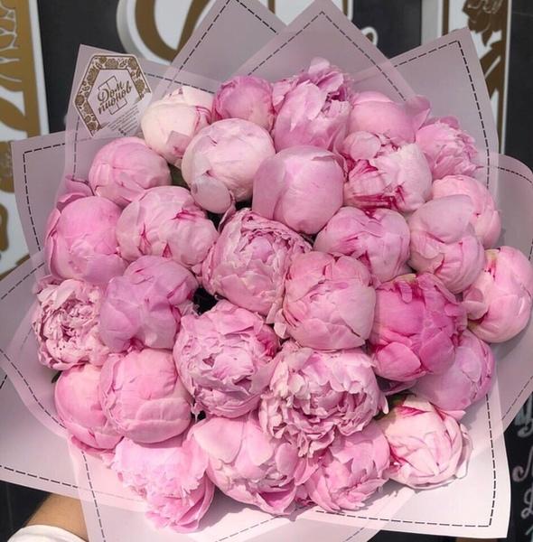 Сохру розового цвета