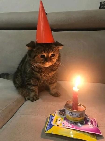 Когда день рождения